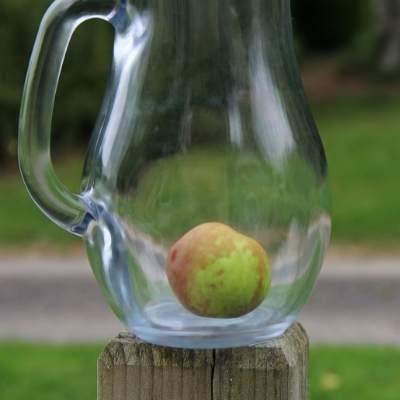 Acondicionador vinagre de manzana