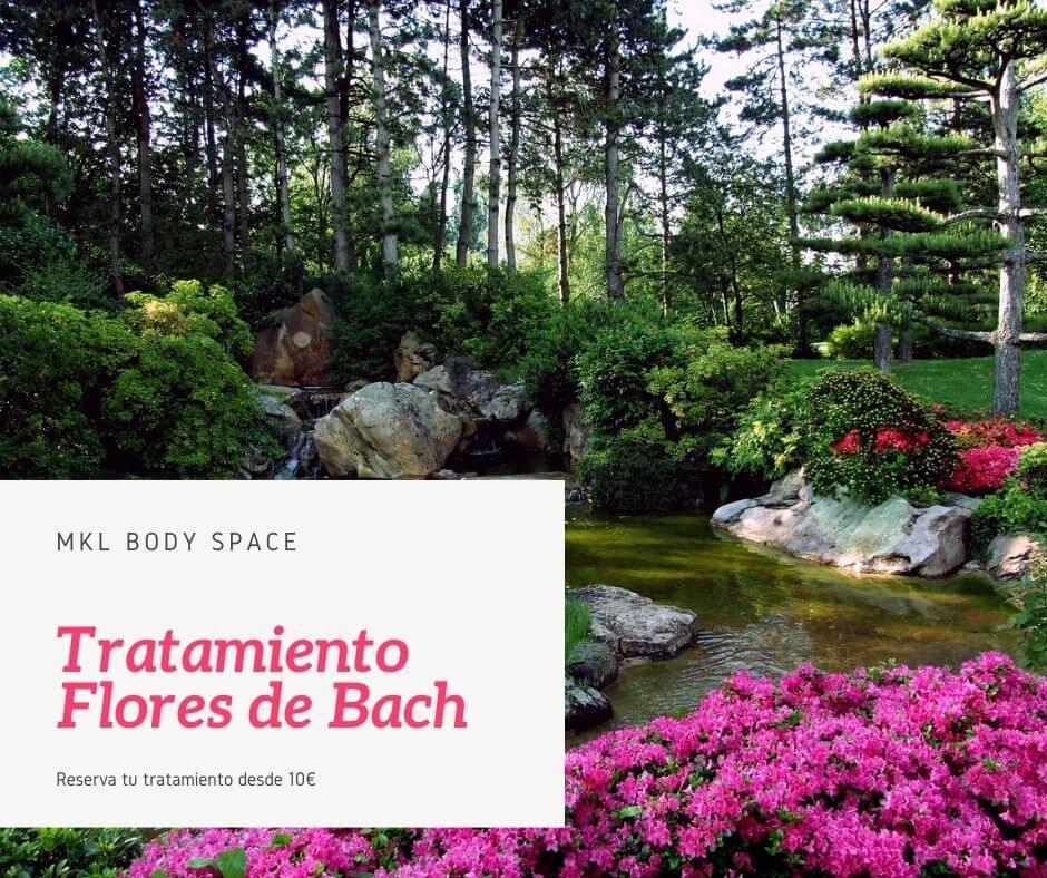 Tratamiento Flores de Bach sabadell